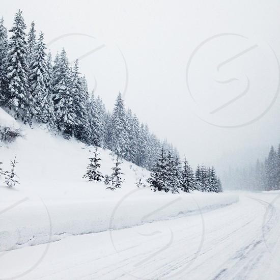 snow view photo