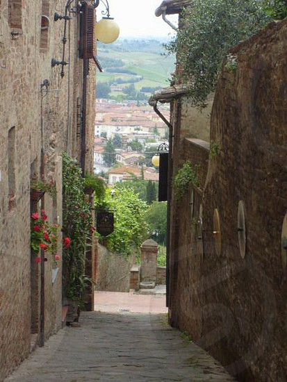 A glimpse of Tuscan rooftops photo