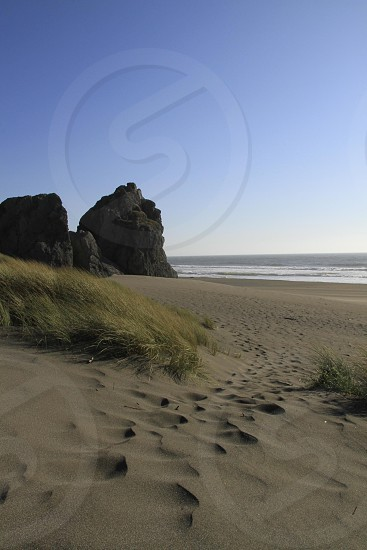 footprints in the sand - west coast photo