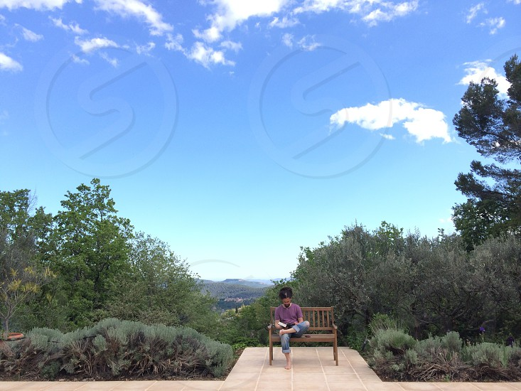 woman sitting on bench by trees photo