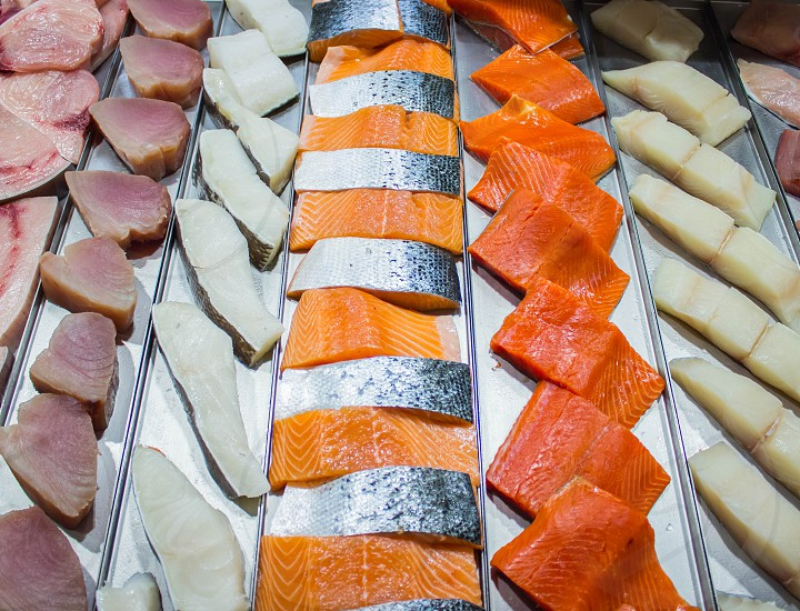 Colorful Salmon photo