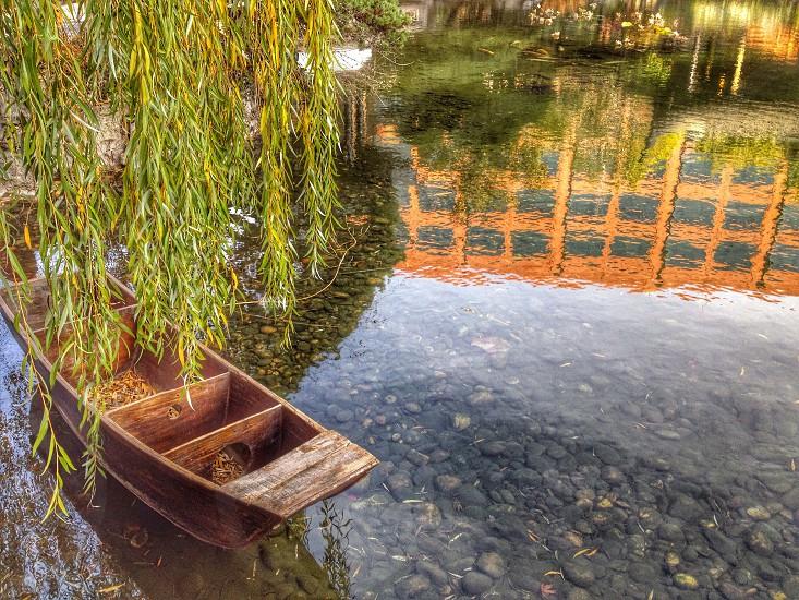 Portland Chinese Garden  photo