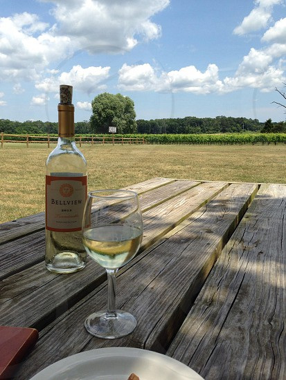 Wine vineyard Bellview Winery New Jersey photo