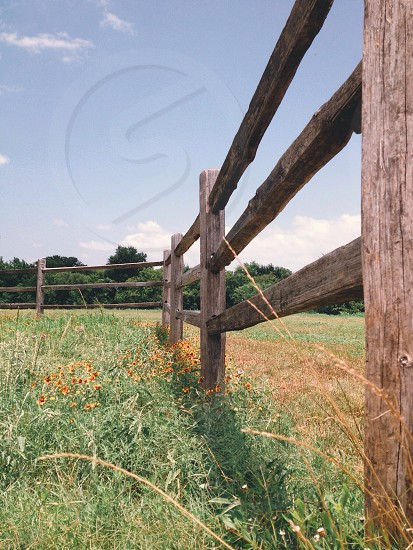 brown wooden fence near green grass photo
