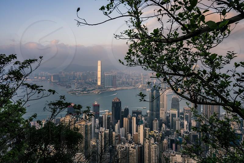 Hong Kong cityscape skyline skyscrapers urban skyline photo