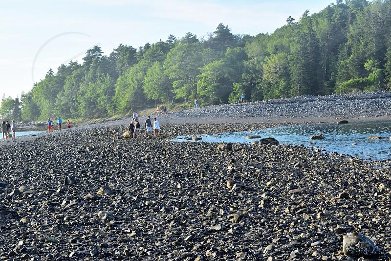 Bar Island Acadia National park Bar Harbor Maine New England. photo