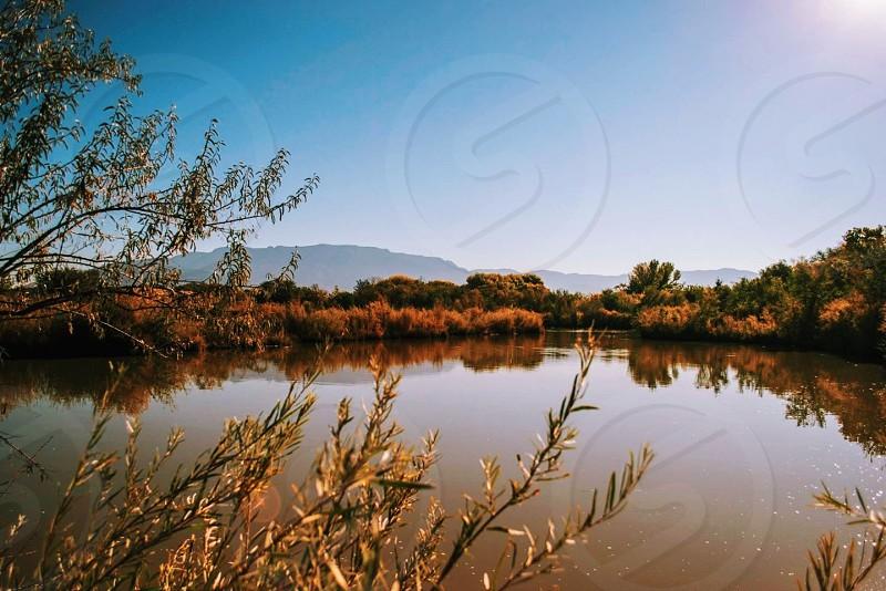 brown grass next to lake photo
