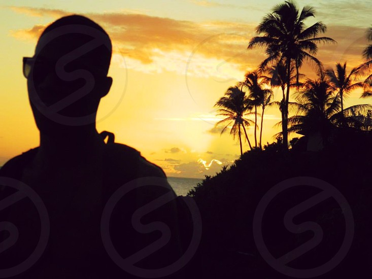 silhouette photo of man and trees photo