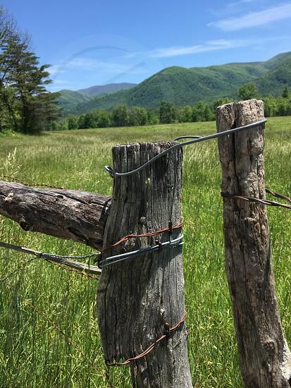 Great Smoky Mountains photo