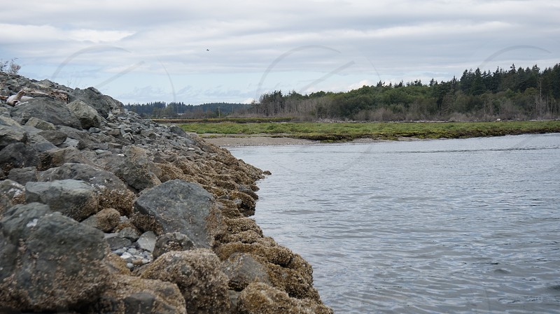 body of water beside pile of boulders photo