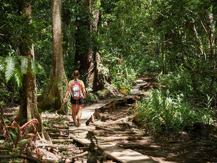 Woman walking on a wooden path trail in nature environment of Hawaii hike lifestyle  photo