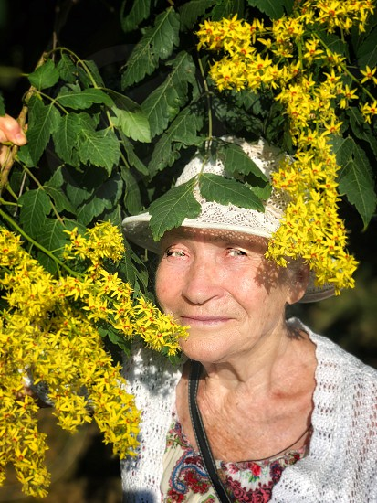 Portrait of a cute elderly woman in a knitted sun hat with a pleasant smile on her face among the branches of a flowering tree. photo
