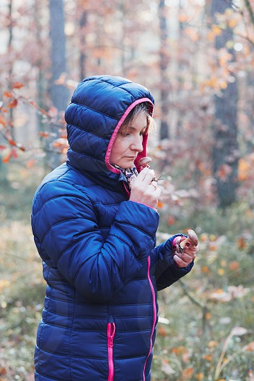 Woman smelling a mushroom picked in forest. Forest in autumn season. Colorful foliage on trees lit by morning sunlight. Natural nature forest landscape in autumn warm sunlight day. Real people authentic situations photo