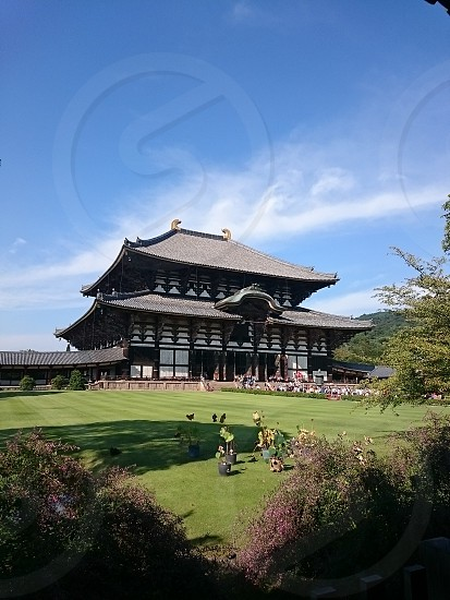 奈良 東大寺 photo