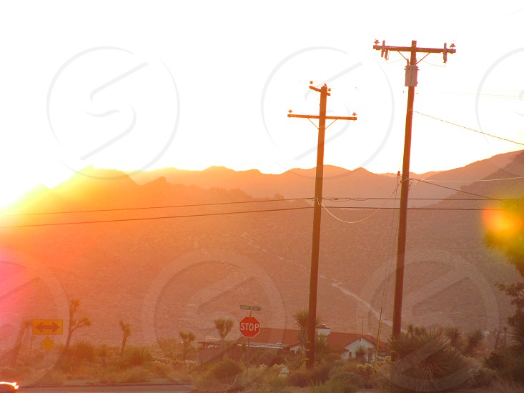 two electricity poles photo