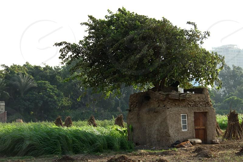 House in Dahab Island Cairo Egypt photo