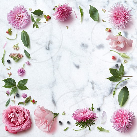 Frame of spring flowers on a white marble background with space for text photo