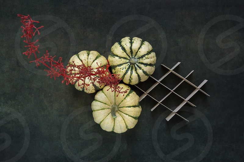Still life with decorative pumpkins and a red branch photo