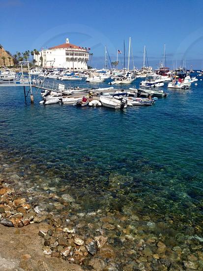 #CatalinaIsland #Avalon #sailing #boating photo