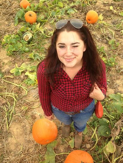 Pumpkin picking photo