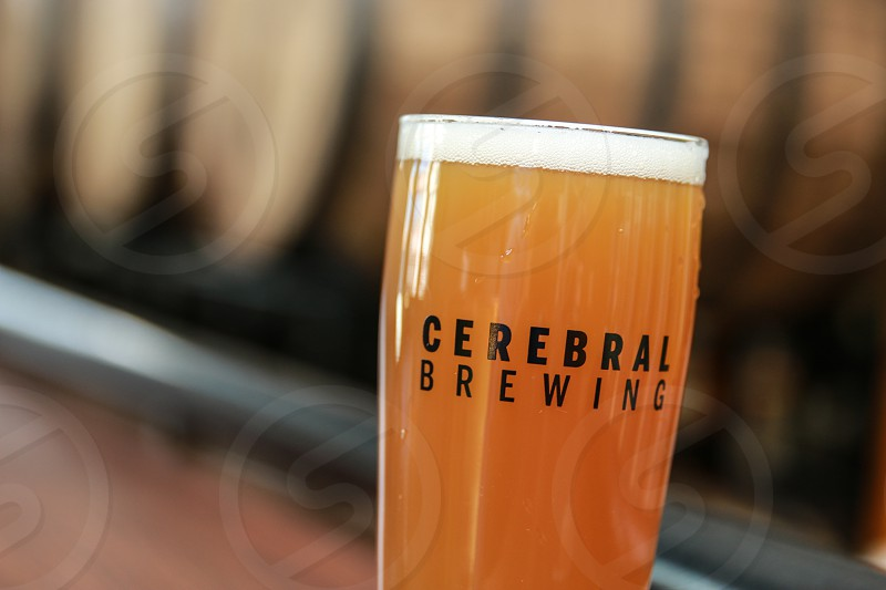 Cerebral Brewing. Entree. Beverage. Menu Selection. Denver Colorado photo
