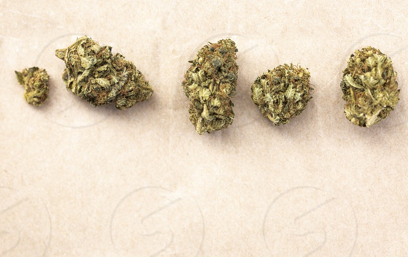 Detail of legal marijuana flowers photographed on paper  background photo