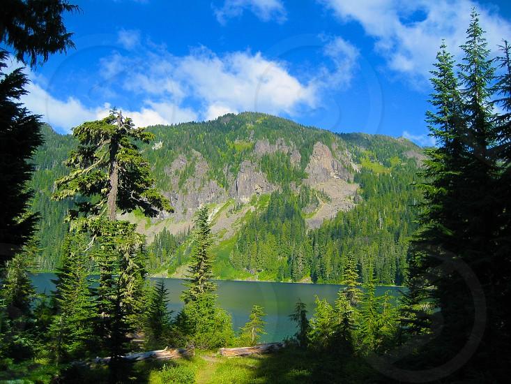 Wilderness photo