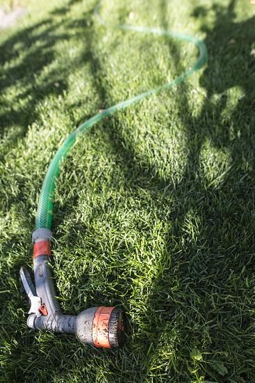 Garden hose and sprayer on green meadow photo