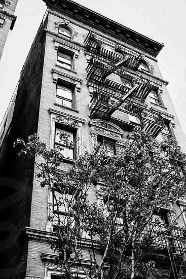 Old brown stone - Harlem photo