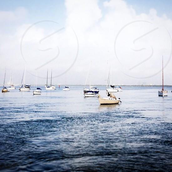 sailboats on ocean photo