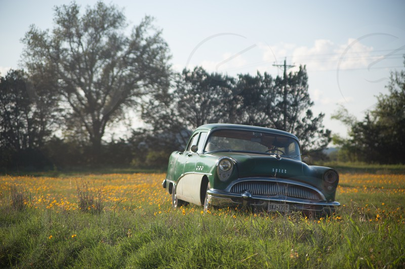 rustic old antique rust beater car buick field flowers country classic abandon neglect vintage history glass green american photo