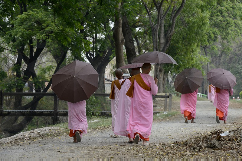 Buddhist Nun on a road in the town of Nyaungshwe at the Inle Lake in the Shan State in the east of Myanmar in Southeastasia. photo