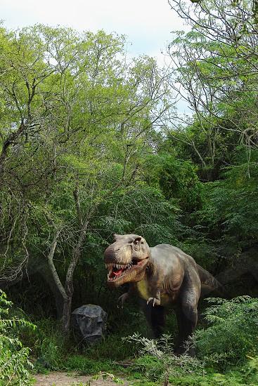 dinosaur lurking in the woods  photo