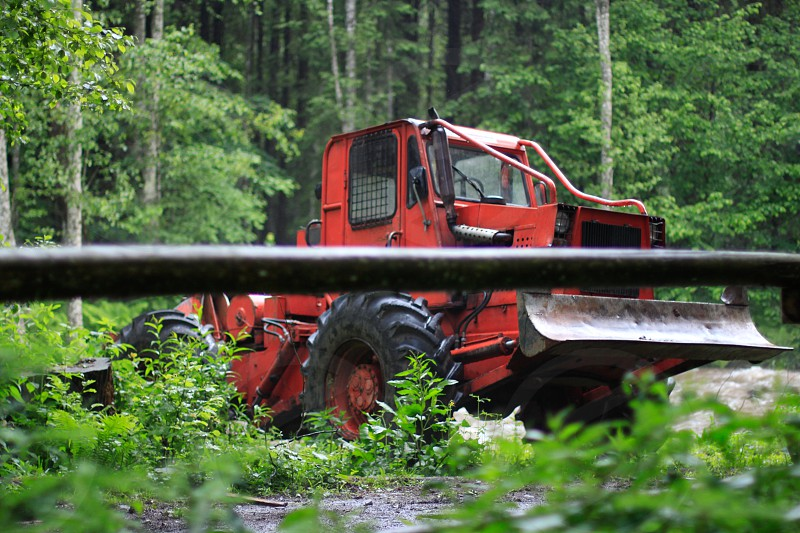 red bulldozer surrounded by green forest trees photo