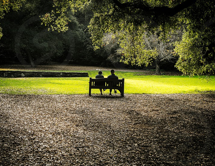 tranquility balance peaceful symmetry chatting park kinship photo
