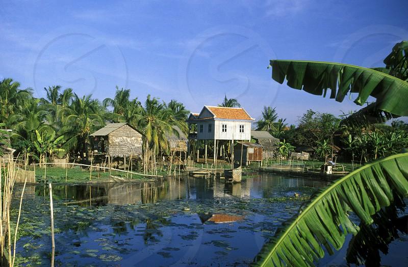 a Farmer village outside of the city of phnom penh in cambodia in southeastasia.  photo