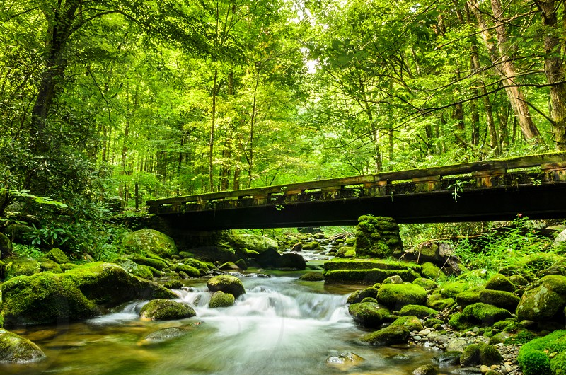 An old bridge across a stream in the Appalachian mountains. photo