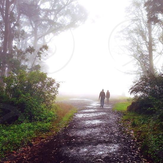 Mount Davidson San Francisco photo