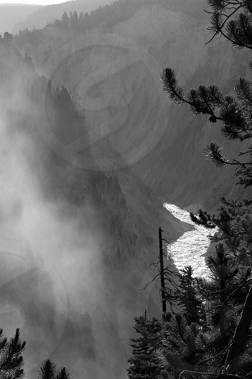 Mountain river. Morning. Yellowstone. photo