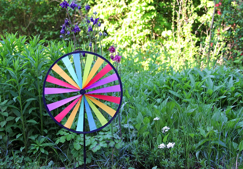 multi colored round pin wheel in a garden. sunshine. Sunlight. summer. copy space photo