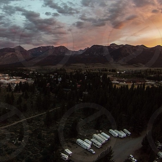 aerial photography of bus near green pine trees at golden hour photo
