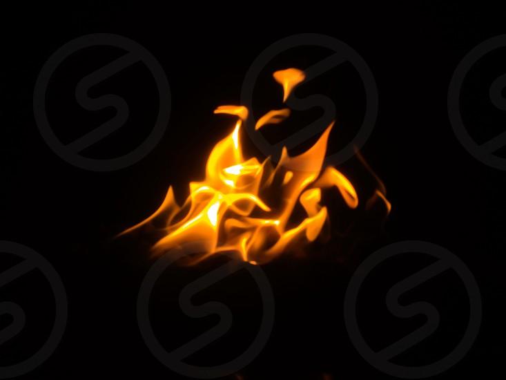 yellow fire photo