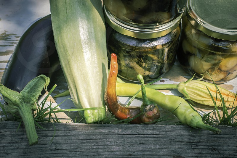 Canned vegetables in garden photo