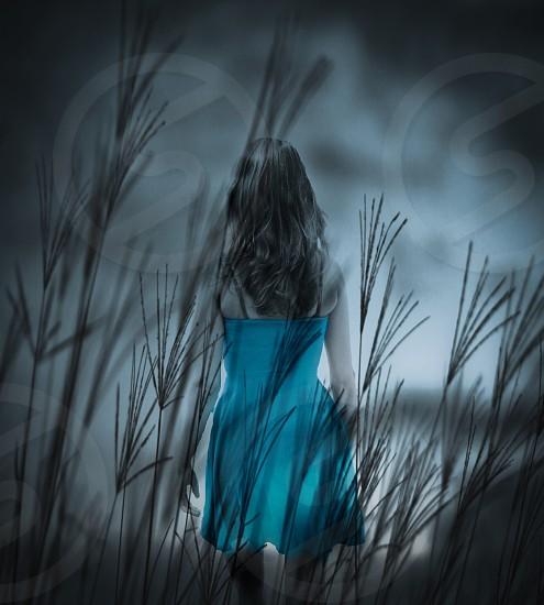 Mysterious ominous dark eerie beautiful field wheat field photo