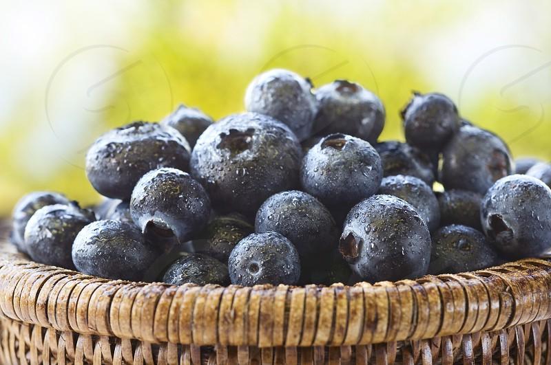 basket of blueberries photo