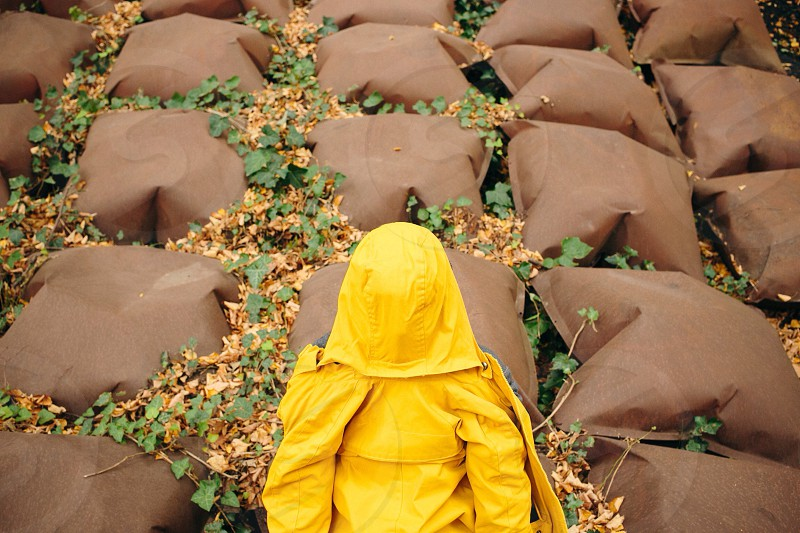 yellow hoodie photo