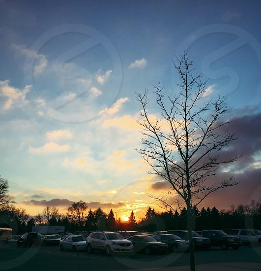 Sunset Hope Travel Wanderlust Cars Tree  photo