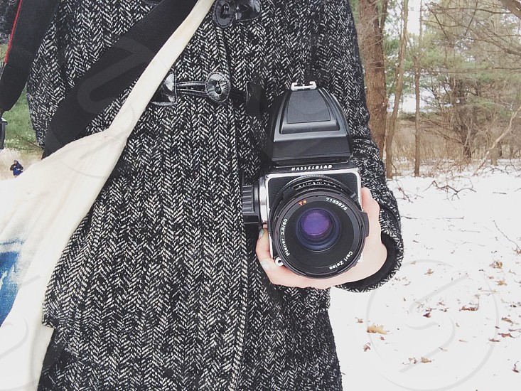 Adventuring in the woods with an analog camera.  photo