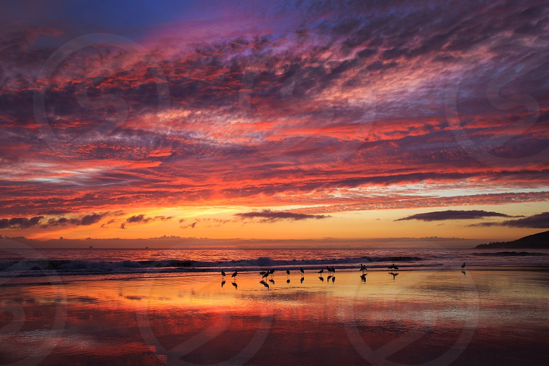 Sunset reflections red birds wave ocean clouds twilight beach California photo