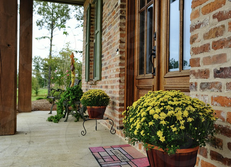 Fall home house lawn flowers yard porch front porch  photo